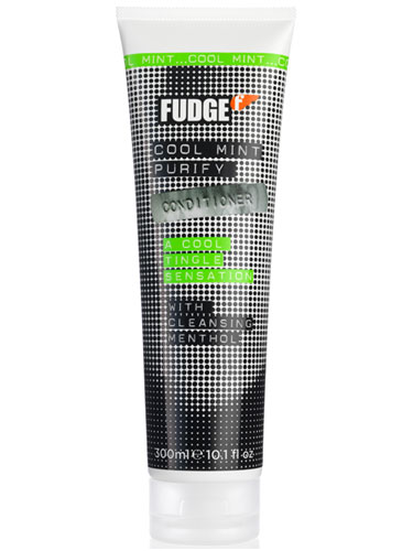 Fudge Cool Mint Purify Conditioner (300ml)