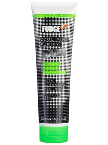 Fudge Cool Mint Purify Shampoo (300ml)