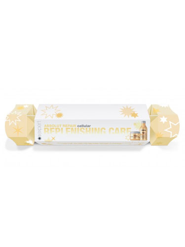 L'Oreal Professionnel Serie Expert Absolut Repair Lipidum Christmas Cracker